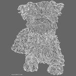 Cairn Terrier white line