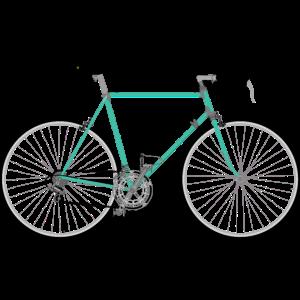 Rennrad für Hipster
