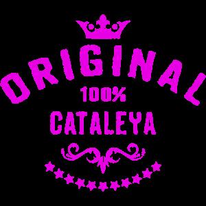 100 Prozent Cataleya - RAHMENLOS Geburtstagsgeschenk Muttertag