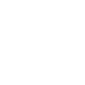 Ldn Reiterin Shirt