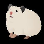 Luonnonvalkoinen hamsteri