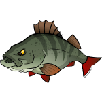 Red River: Perch
