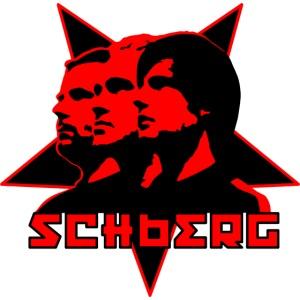 schberg vektor2