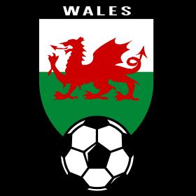 Fussball Fan Shirt Wales 2016