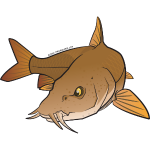 Red River: Barbel