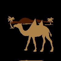 Egypt Cameleon