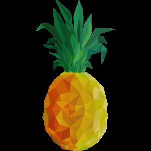 Ananas Polygon - Bunt