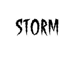storm logo png