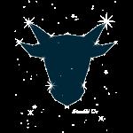 Sternbild Ox