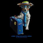 The Blue Dog Traveler