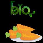 bio_carotts1