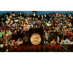 creation_montage