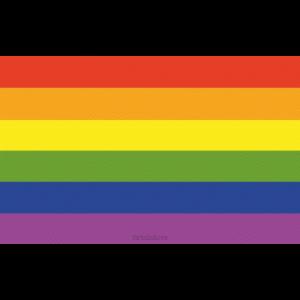 Rainbow Flag Regenbogenfahne CSD Peace