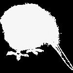 kiwi-weiss