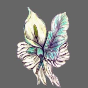 bunte Calasblüte