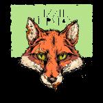 Teeth EP Fox