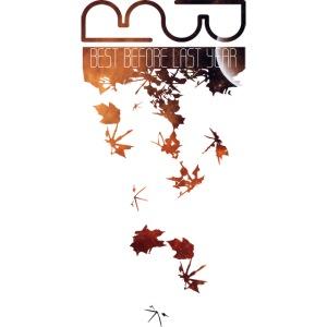 Men's longsleeve Leaves