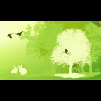Naturschutz Wald Kaninche