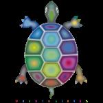 Farbenschildkröte
