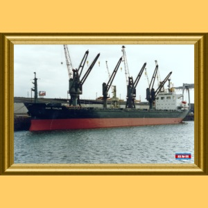 DSR_Tianjin_DSR_Gold PP_F