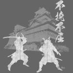 Samurai castle wt