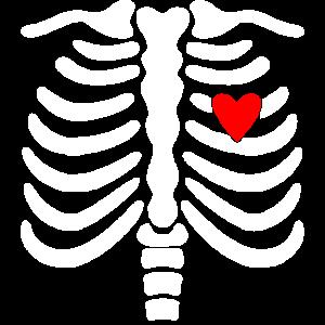 Skelett-Skelett