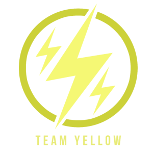 Team Yellow Catch Em all