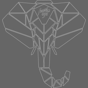 HWK elephant geometric