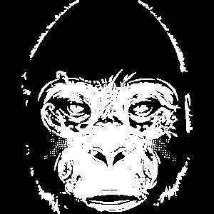 Kopf eines Gorillas
