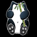 Panda-bambou