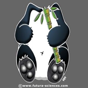 panda tblanc