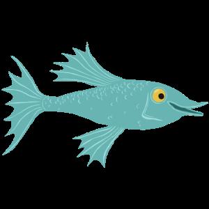 Fisch petrol