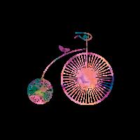 Retro Bike // Rosa