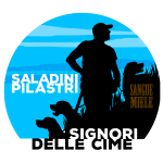 tondo saladini pilastri