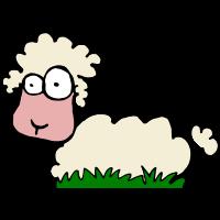freaky sheep