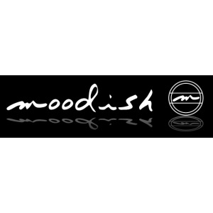 moodish Logo gesamt Spieg