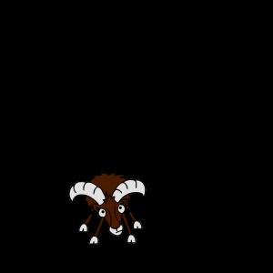 Mufflon mit eigener Spur