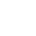 vit wiki wordmark