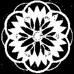 White PondBouquet Mandala