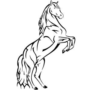 horse sreadshirt gif gif
