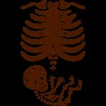 Maternity Sugar Skull