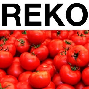 REKOpaita tomaatti