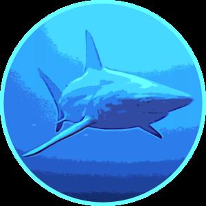 Große Haie
