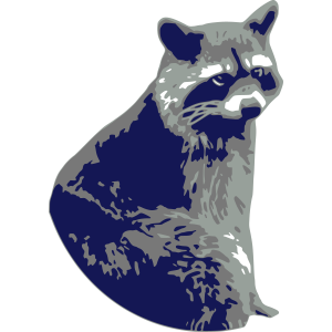 waschbär bär