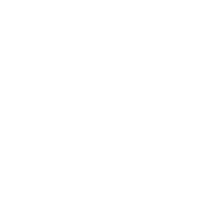 Wings_white