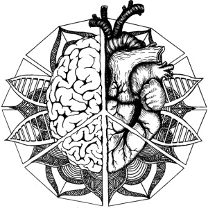 peace, brain & heart