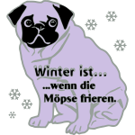 mops im winter möpse