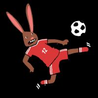 Hase_spielt_Fußball_DS