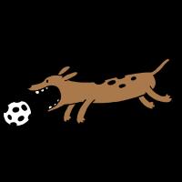 Hund_spielt_Fußball_DS