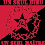 drapeau_anar